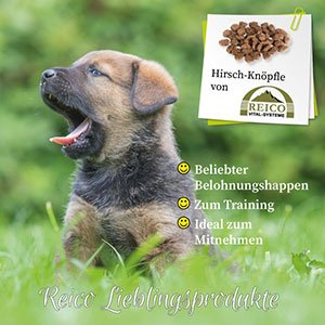 Reico Hirsch-Knöpfle