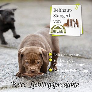 Reico Rehhaut-Stangerl